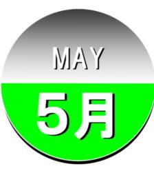 5月1日の誕生石「アマゾナイト」