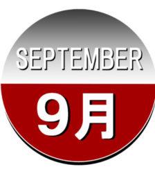 9月1日の誕生石であるタンザナイトは、物事を正しい方向に導いてくれます