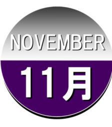 11月1日の誕生石バラク