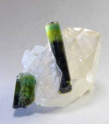 1月8日の誕生石であるグリーン・トルマリン