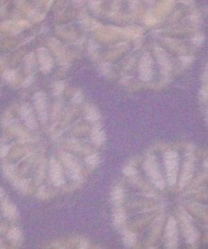 9月9日の誕生石は『菊花石』