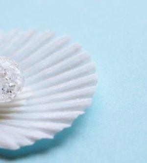 11月27日の誕生石、真珠母貝