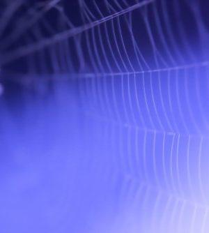 10月29日の誕生石の名前は「クモの巣トルコ石」